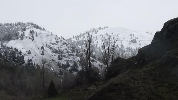 Gümüşhane Belediyesi  2023 vizyon projelerinden birisi olan Gümüşhane'nin eski yerleşim alanı olan Süleymaniye Kayak tesisi  projesi hazırlanarak basına tanıtıldı.
