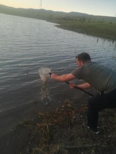Gümüşhane'de Tarım ve Orman Bakanlığı Balıkçılık ve Su Ürünleri Genel Müdürlüğü tarafından yürütülen 'Su Kaynaklarının Balıklandırılması Projesi' kapsamında 45 bin adet sazan balığı yavrusu Gümüşhane Merkez Süle ve Köse Övünce göletlerine bırakıldı. Gümüşhane'de Tarım ve Orman Bakanlığı Balıkçılık ve Su Ürünleri Genel Müdürlüğü tarafından yürütülen 'Su Kaynaklarının Balıklandırılması Projesi' kapsamında 45 bin adet sazan balığı yavrusu Gümüşhane Merkez Süle ve Köse Övünce göletlerine bırakıldı.