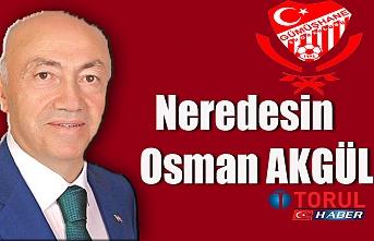 Neredesin Osman Akgül