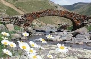 Ortadan kaybolan 300 yıllık tarihi köprü, gizemini...