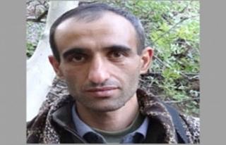 PKK'ya ağır darbe! Üst düzey sorumlu öldürüldü
