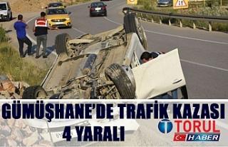 Gümüşhane'de Trafik Kazası