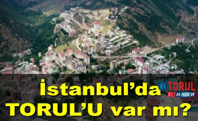 İstanbul'da TORUL'U var mı?