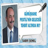 Sabri Şenel